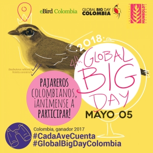 En el Global Big Day 2018 cada ave cuenta